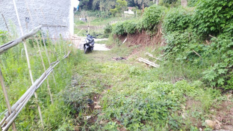 Tanah Murah di Lembang Bandung