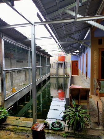rumah 2 lantai bebas banjir tanah sangat luas di kp
