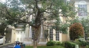Dijual Cepat Rumah Di Bsd City The Green Cluster Bellagio Mic 2208