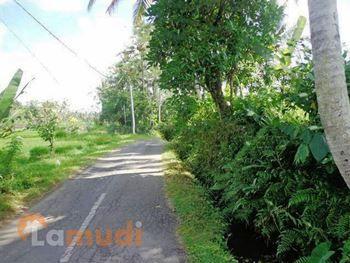 lahan dijual di Ubud