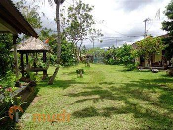 beli tanah di Ubud
