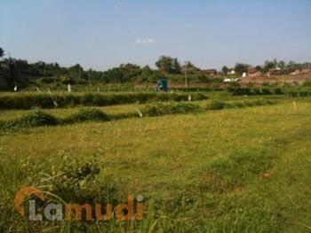 Tanah Dijual Murah di Jember