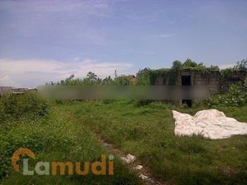 Tanah Murah Dijual di Purbalingga