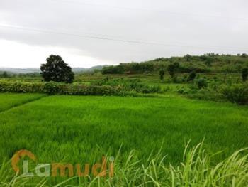 Tanah Murah Dijual di Purwakarta
