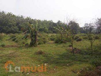 Tanah Murah Dijual di Citayam