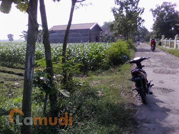 rumah dijual di Jombang