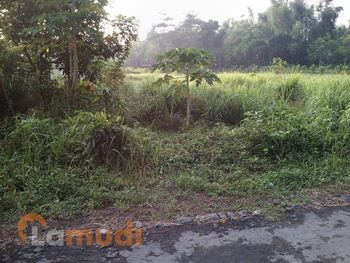 landed house Lawang