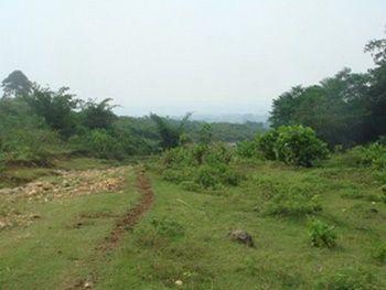 Tanah Murah Dijual di Jonggol