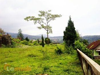 Tanah untuk Berinvestasi di Pasuruan