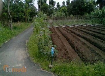 Tanah untuk Investasi di Binjai