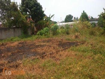 Tanah Murah Dijual di Sumatera Selatan