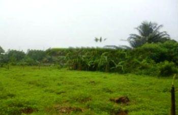 Lahan di Banten