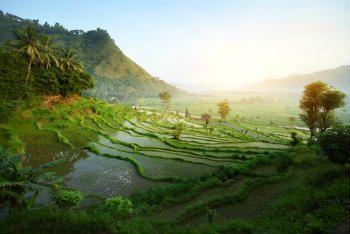 Tanah di Bali