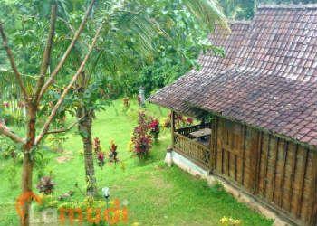 Rumah Dijual di Ubud